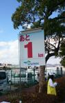kobenokori1.png