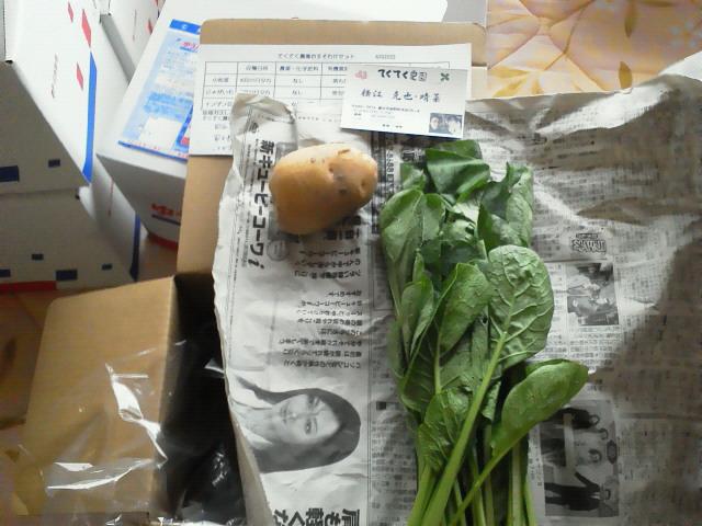 野菜の出荷作業