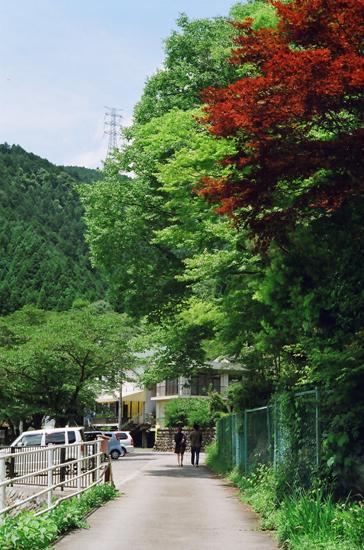 20100710御嶽渓谷su9
