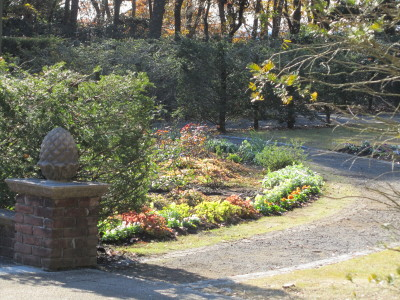 秘密の花園0001