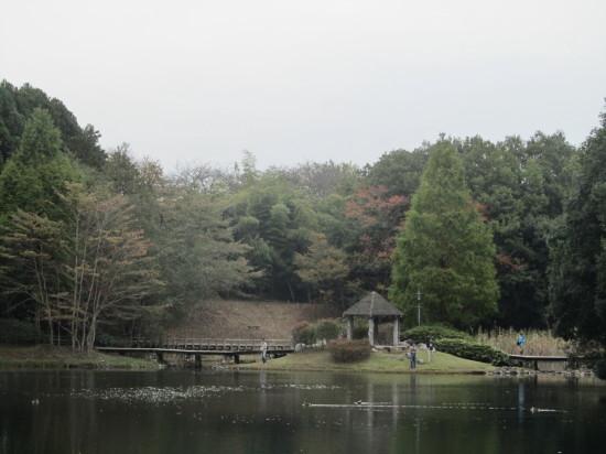 七ツ洞公園0001_8