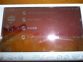 P1000054 (Custom)