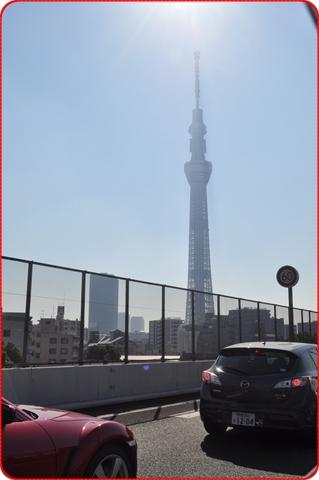 2011114-1.jpg