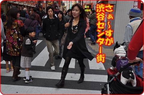 20111212-7.jpg