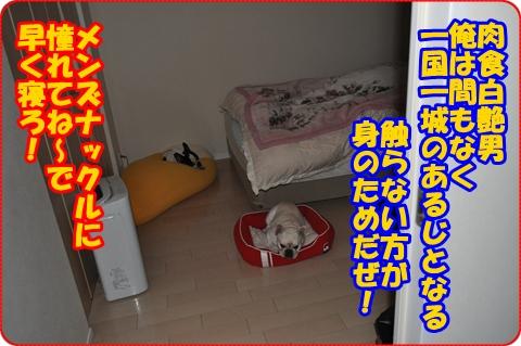 2012-4-25-000.jpg