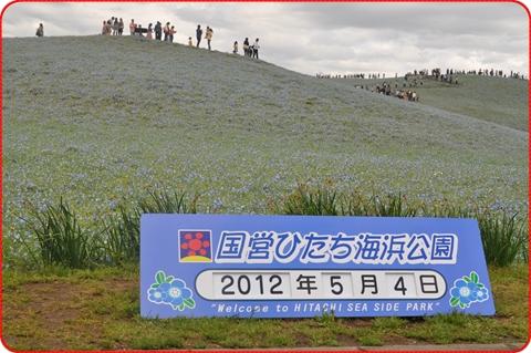 2012-5-13-20.jpg