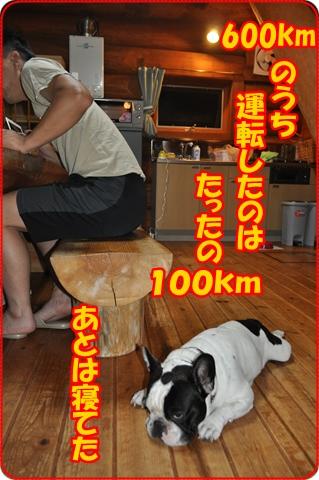 2012-9-20-36.jpg