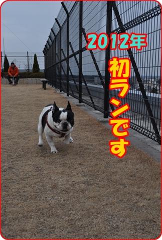 201212-2.jpg