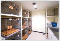 petroom.jpg