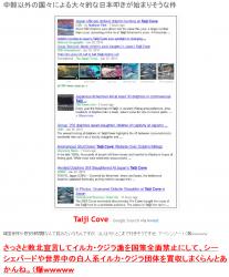 tokイルカ日本叩き