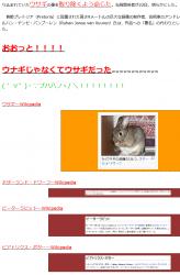 tenウサギ