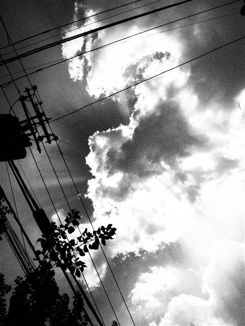 P8121997-e_R.jpg