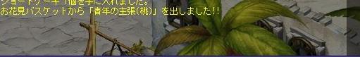 TWCI_2012_4_5_22_30_46.jpg