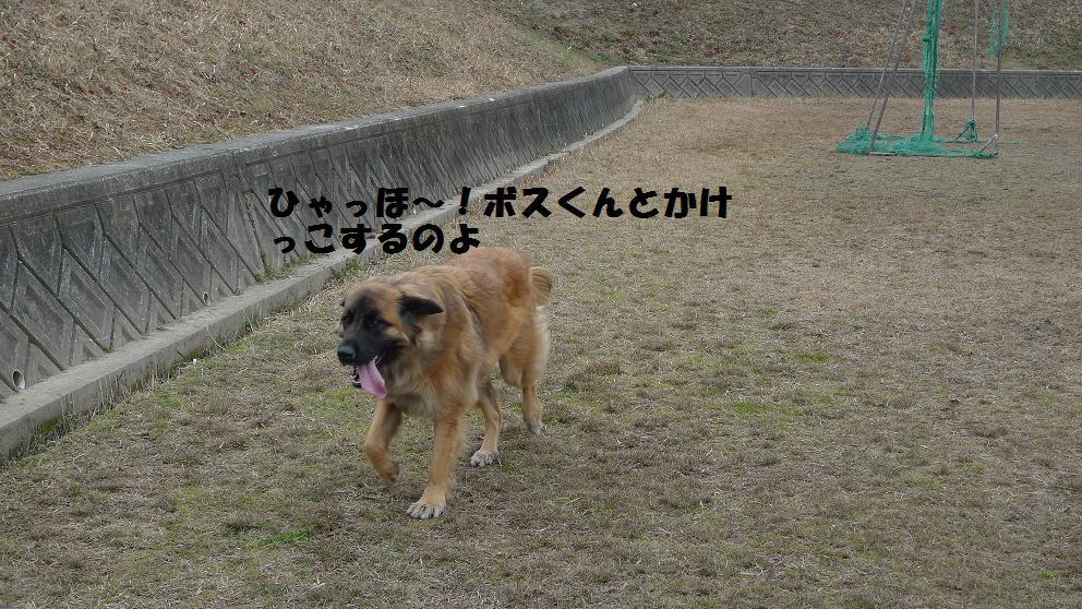 22日お散歩