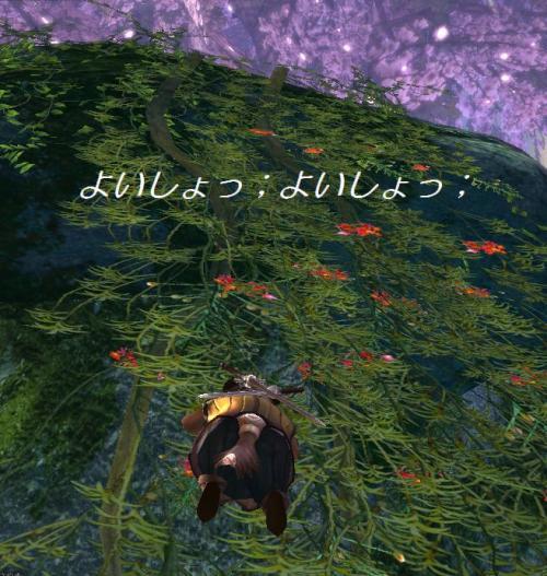 tera110701_2_convert_20110702143952.jpg