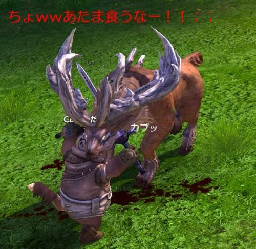 tera110701_5_convert_20110702144117.jpg