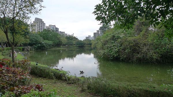 111231大安森林公園03