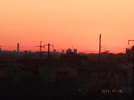 2014_11150001.jpg