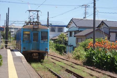 カンナ咲く外川駅