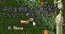 WS001870_201411092025360af.jpg
