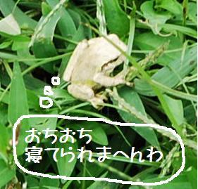 0930-13.jpg