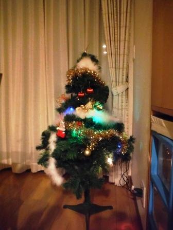 家族でクリスマス2013 5