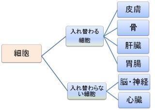 image94.jpg