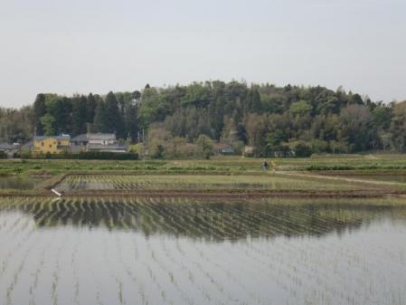 長男の通学路(2010年4月)