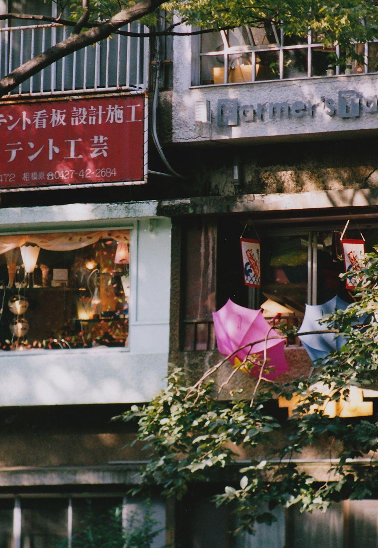 photo album_0026_2