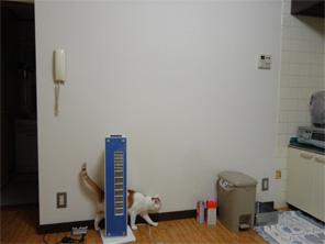 新しい家電と家具2