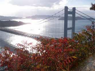 鷲羽山 瀬戸大橋の紅葉3