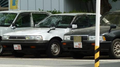 X80CRESTA 110504 1