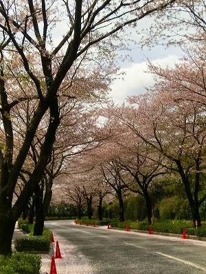 2012.04.15栃木戦1