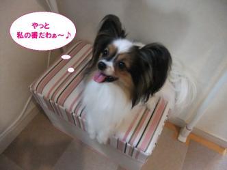 01-07_20111101074138.jpg