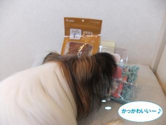 08-01_20111108085828.jpg