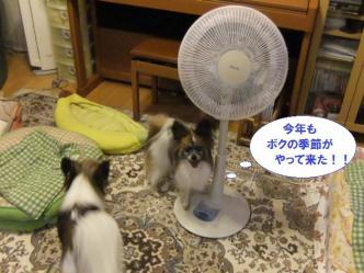 10-01_20120711120131.jpg