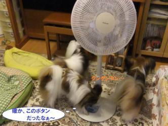10-02_20120711120130.jpg
