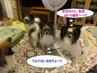 10-04_20120711120127.jpg