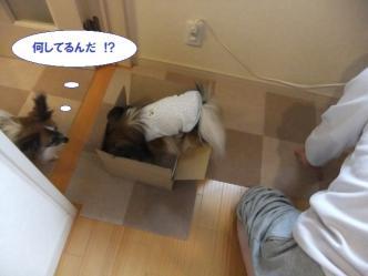 10-07_20120512150318.jpg