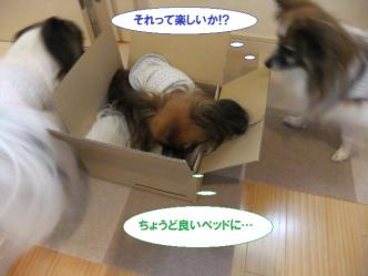10-08_20120512150318.jpg