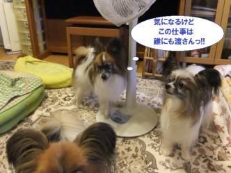 10-10_20120711120051.jpg