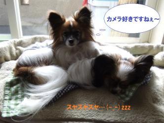 14-01_20120314192848.jpg
