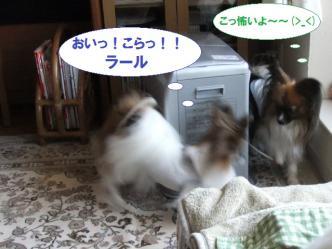 16-03_20120418191041.jpg