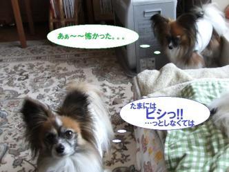 16-05_20120418191043.jpg