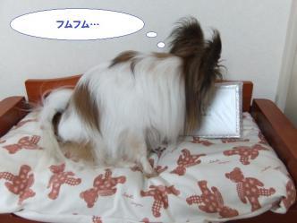 20-06_20120720205004.jpg