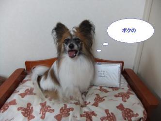 20-07_20120720203432.jpg