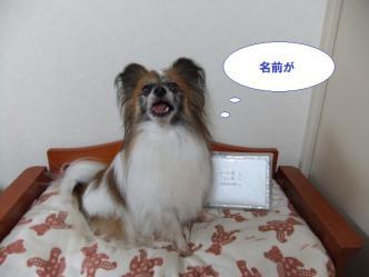 20-08_20120720203431.jpg