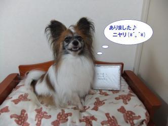 20-09_20120720203430.jpg