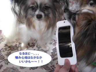 21-09_20120521113217.jpg