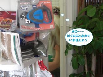 22-07_20120624084600.jpg
